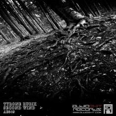 (AE049)Tyrone Rubik – Second Wind